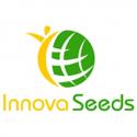 Innova Seeds (США)